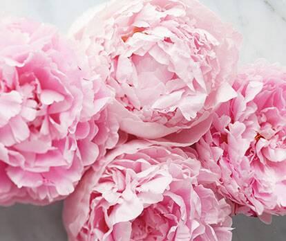 Cvetlični vonji