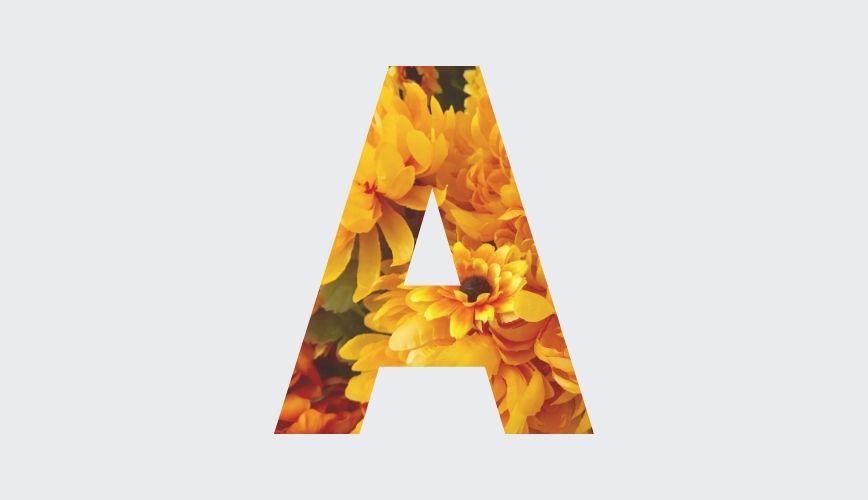 Vonji po abecedi